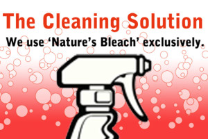 Cleaning_natures_bleach