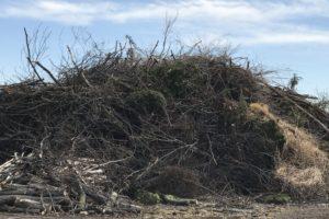 green_waste_dropoff_dump