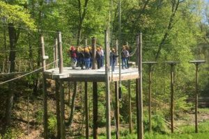 corporate retreat high ropes