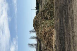 findlay_composting_site