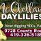 mcclellands_daylilies