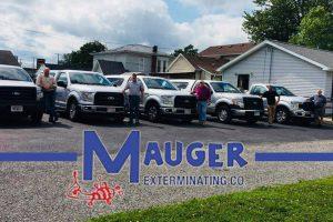 mauger exterminating